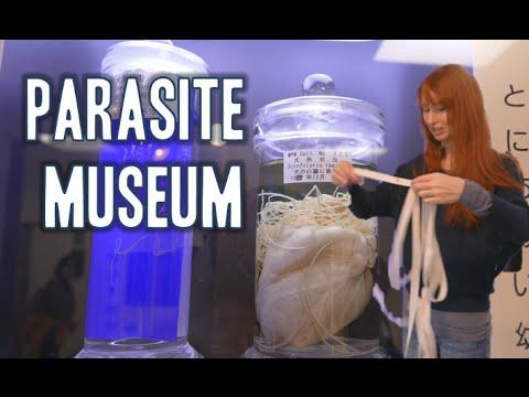 Tokyo Parasite Museum! 寄生虫博物館東京