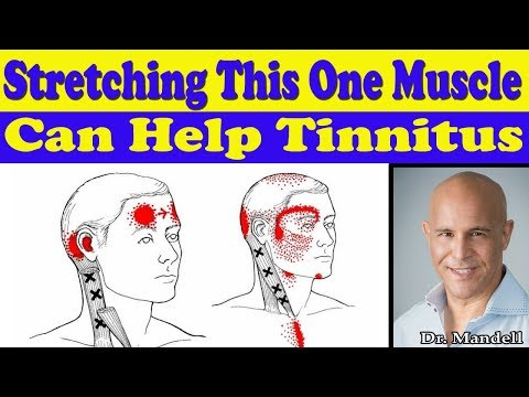 stretching-this-one-neck-muscle-can-help-your-tinnitus---dr-alan-mandell,-dc