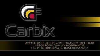 Автомобильные коврики carbix