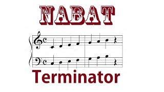 The Terminator. Ремейк главной темы фильма.