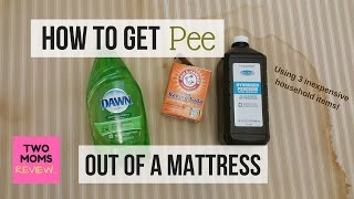 How to Get Pee Out of a Mattress in 5 Easy Steps!!! Over 750,000 Views!!