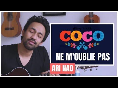 Coco - Ne m'oublie pas / Remember me / Recuerda me [COVER] - Ari Nao