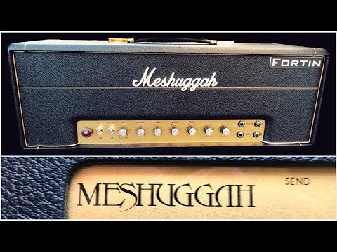 Sure it DJENTS but does it sound like a PLEXI?? Fortin Meshuggah Signature!
