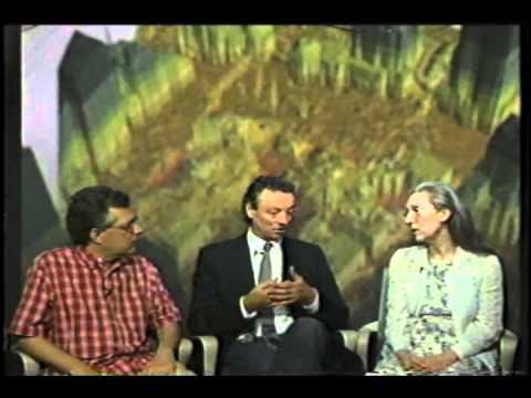 9/11 geospatial imaging with Professor Sean Ahearn - YouTube