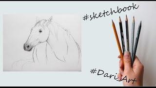 Рисуем скетчи! Как нарисовать лошадь простым карандашом! #Dari_Art(В этом видео мы сделаем быстрый скетч лошади простым карандашом! Свои идеи к видео урокам оставляйте в груп..., 2015-11-16T13:26:39.000Z)