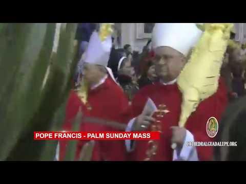 Pope Francis - Palm Sunday