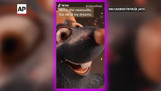 Tiktok users have created a viral 'ratatouille' musical within the social media community with creatives making their own songs, choreography, merchandise, p...