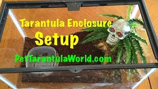 How to Set Up a Tarantula Enclosure - Easy Step By Step Guide!