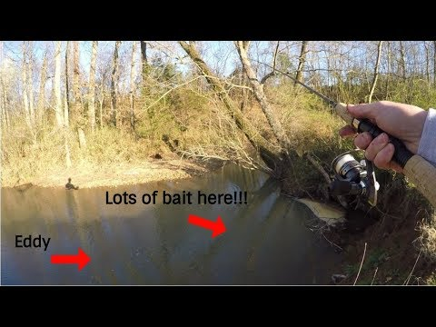 How To FIND And CATCH Bait For Catfish In Creeks