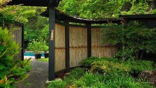 30+ Bamboo Garden and Landscaping Design Ideas