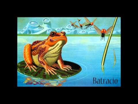 Batracio -