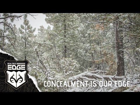 Realtree EDGE: New Camouflage Allows You To Effectively Dominate Geographic Elements