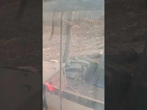 LKT-80 Driver Video N-11