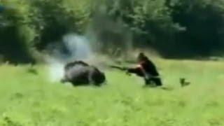 FUNNY PIGS HUNTING  ОХОТА НА КАБАНА!