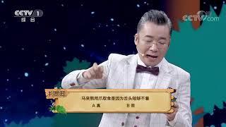 [正大综艺·动物来啦]判断题 马来熊用爪取食是因为舌头短够不到| CCTV