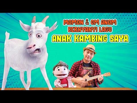 Download LAGU ANAK KAMBING SAYA I MOMON