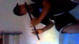 The Honeymoon reel played on irish flute dixon