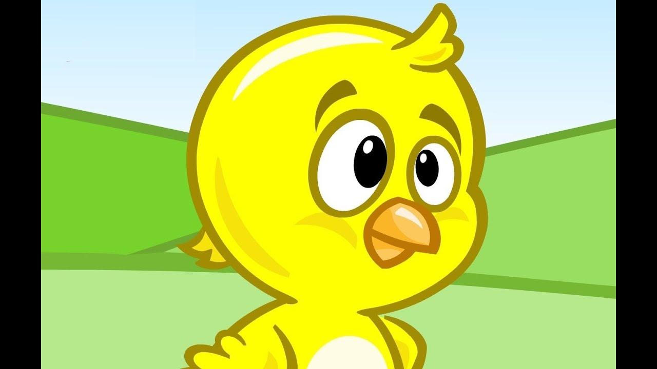 Canciones infantiles en espa ol pollito amarillito canta - Para ninos infantiles ...