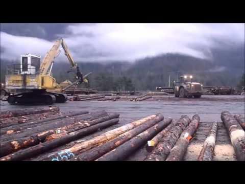 Vancouver Island dryland sort