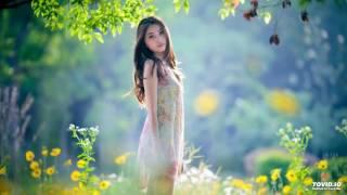 Hoa Vàng Mấy Độ - Quang Dung