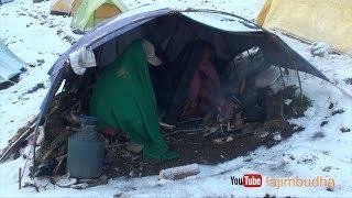 Inside the tent ❄️yarsagumba