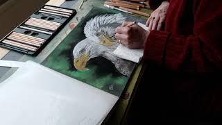 Els aan het inkleuren tekening: Romeo and Juliet Bald eagles, North-east Florida USA.