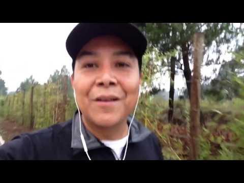 Enseñanzas que nos deja el ejercicio - Luis Bravo