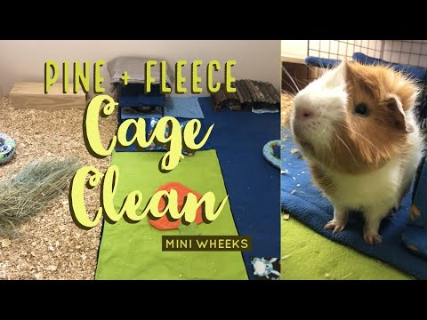 Pine + Fleece Cage Clean - Guinea Pigs