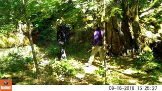Human and Mountain lion encounter at Patterson-Gimlin Bigfoot film site on Bluff Creek