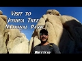 Visit to Joshua Tree VanLife On the Road