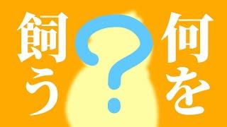 【アニメ】無性に動物と暮らしたくなった人のための動画!!!