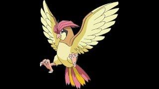 Tiân hàa Pidgey !!! | #9 Roblox Pokemon Brick Bronze