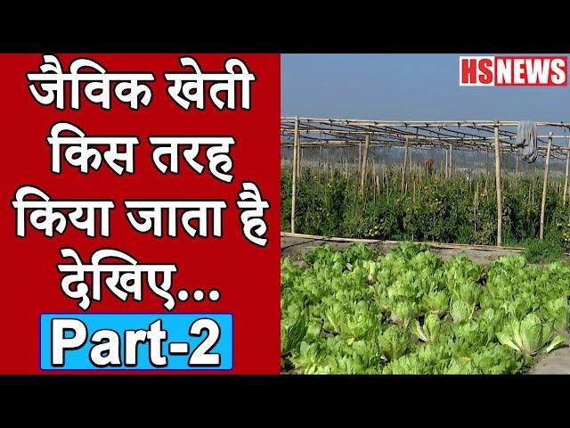 कैसे करें Multi-Layer Farming? | Organic Farming Part-2 | HS News