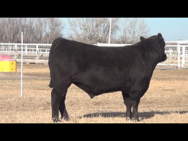 Express Ranches Lot 421