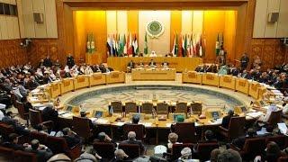بالفيديو.. «شردي»: لبنان الدولة الوحيدة التي لم تصوت ضد إيران بالجامعة العربية
