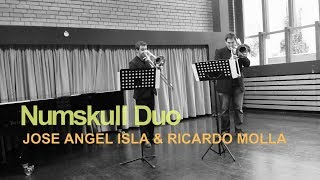 NUMSKULL DUO performs Devil