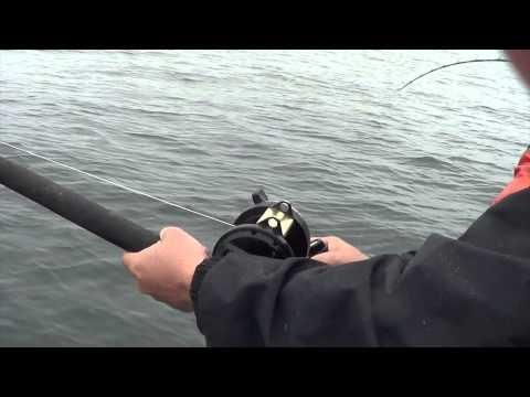 A Day Of Alaska Fishing (Kingfisher Charters)