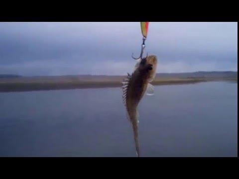 ночная рыбалка на енисее
