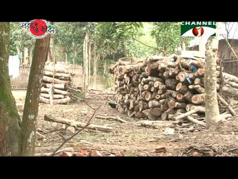Nature and Life - Episode 182 (Dudhpukuria-Dhopachari Wildlife Sanctuary)