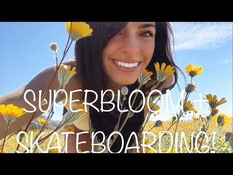 Barefoot Adventure Babes Super Bloom Skateboarding!