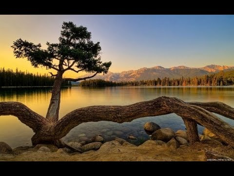Relaxing Music for Stress Relief  Beautiful Music for Meditation, Healing Therapy, Sleep 2019