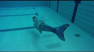 «عروس البحر» تظهر في حمام سباحة بهولندا