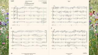 """Träumerei aus """"Kinderszenen"""", op. 15 für Akkordeonorchester von Robert Schumann"""