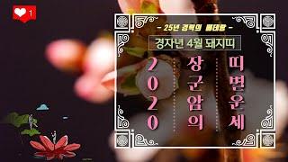 [서울점집] 【장군암】 2020년 04월 돼지띠 운세