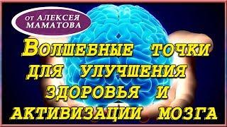 Биологически активные точки.  Улучшаем здоровье, активизируем мозг