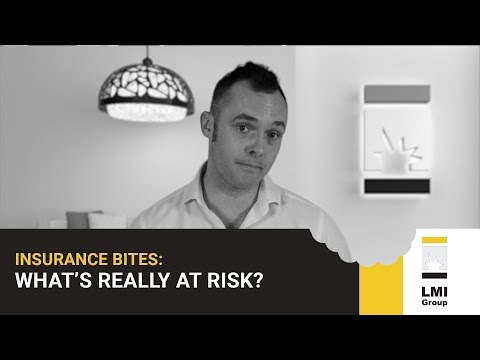 INSURANCE BITES: WHAT'S REALLY AT RISK?