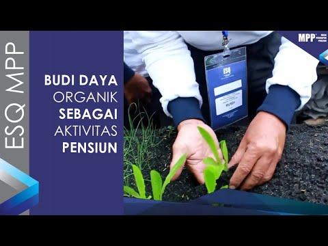 ESQ MPP - PLN Palembang - April 2019