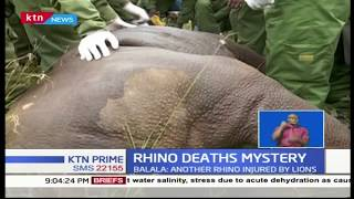 Six KWS officers suspended after several rhinos dies