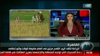 نشرة منتصف الليل من القاهرة والناس 31 يناير