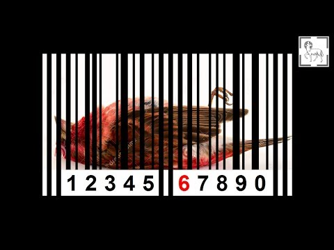 Число имени, паспорт, ИНН и СНИЛС (#298)